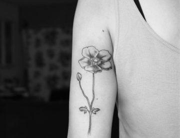 Anemone Blume Tattoo von Laura gestochen - Blutkunst Tattoo & Piercing Studio - Freiburg