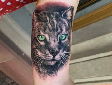 Realisitc cat Portrait Tattoo Blutkunst